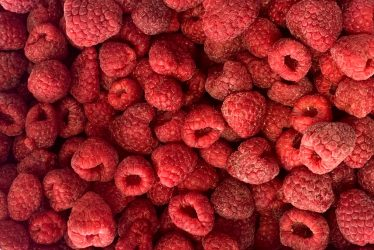 Raspberry whole 95-5 Haba Foods